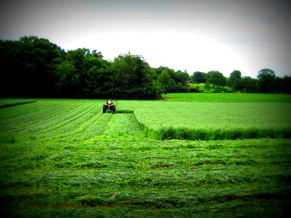 Hobby farming and cutting alfalfa hay