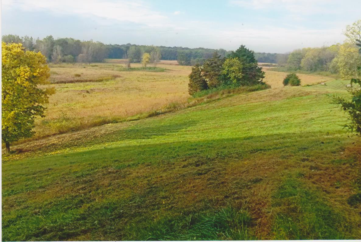 50 Acres Wooded Hunting Land + Tillable Farmland for Sale